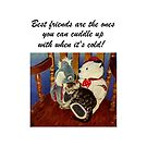 Rocking With Friends - Cat &amp; Stuffed Animals iPhone Cases, T-Shirts &amp; Stickers by Patricia Barmatz