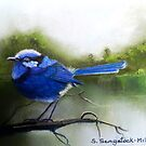 Early Morning Chatter  Sold by Sandra  Sengstock-Miller