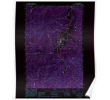 USGS Topo Map Washington State WA Pe Ell 243109 1986 24000 Inverted Poster