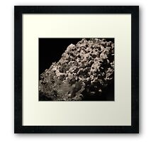 Carbonification on Quartz-Druze  Framed Print