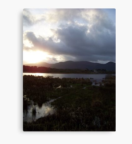 Irish treasure Canvas Print