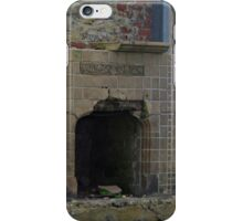 Fireplace and Seagull iPhone Case/Skin