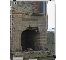 Fireplace and Seagull iPad Case/Skin