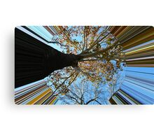 WeatherDon2.com Art 148 Canvas Print
