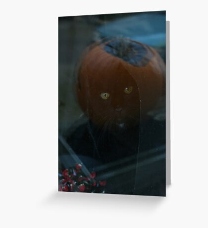 Unexpected Halloween Cat Effect Greeting Card