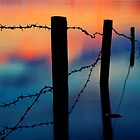 Barbed by James Coard