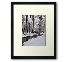 Winter In the Bear Paws Framed Print