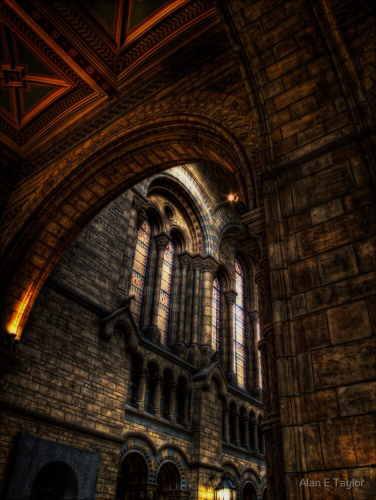 NHM Arches within Arches by Alan E Taylor