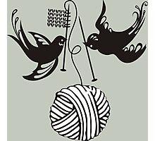 Cute birds knitting needles ball of yarn Photographic Print