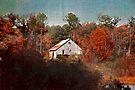The Gray Barn by Eileen McVey