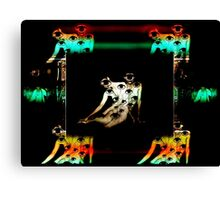 remote viewing Canvas Print