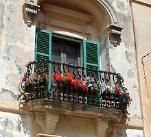 Green Wooden Shutters on Pretty Ornate Iron Flower Balcony by HotHibiscus