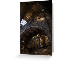NHM Gallery Greeting Card