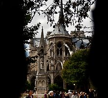 Notre Dame,Paris. by Davide Ferrari