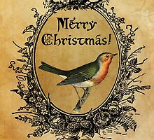 Christmas Robin Card by Claire Elford