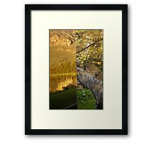 Reflections of Nature vs. Raw Nature  Framed Print