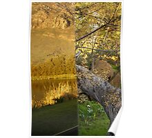 Reflections of Nature vs. Raw Nature  Poster