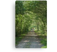 Oh, So Green! Canvas Print