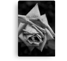 Monochrome Flower Canvas Print