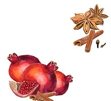 hand drawn watercolor painting fruit garnet with spices by Ego13