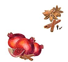 hand drawn watercolor painting fruit garnet with spices Photographic Print