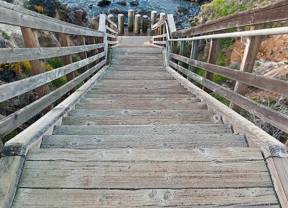 walkway to the beach- Cambria, California by David Chesluk