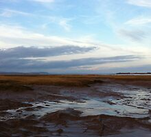 Wolfville at Sunset - Bay of Fundy by Chris Carruthers