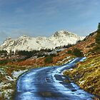 The Road To Blea Tarn. by Jamie  Green