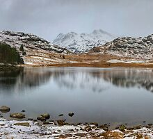 The Winter Tarn by Jamie  Green