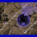 "A ""Blue"" Christmas by Eileen Brymer"