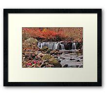 silk in the stream Framed Print