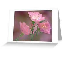 Pink Evening Primrose Greeting Card