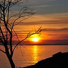 Salute to the Sunrise by Poete100