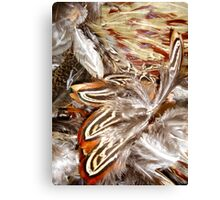 pheasant feathers 1 Canvas Print