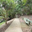 Walk a Shady Grove by SusanSalutation