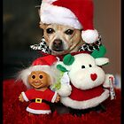 Christmas Chihuahua &amp; Friends by AngieBanta
