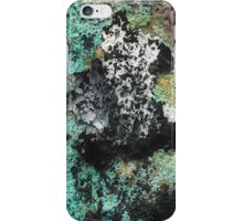 Commensurate Experience iPhone Case/Skin