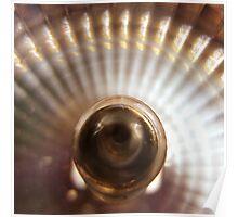 Fuji X10 macro shot of ELH bulb detail 2 Poster