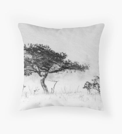 9.12.2011: Alone in the Blizzard I Throw Pillow