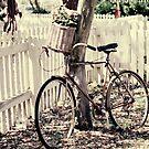 bike by beverlylefevre
