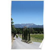Boyntons Winery Poster