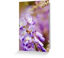 Springtime Greeting Card