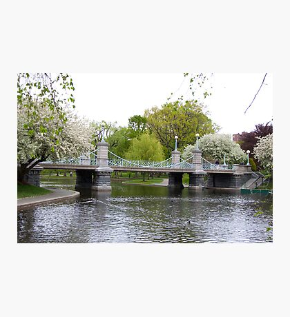 Boston Gardens Photographic Print