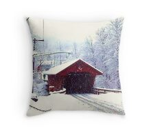 WINTER IN UPSTATE NEW YORK Throw Pillow