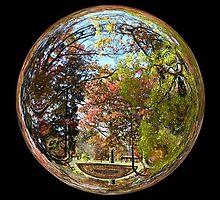 WeatherDon2.com Art 158 by dge357