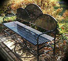 WeatherDon2.com Art 161 by dge357