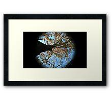 WeatherDon2.com Art 166 Framed Print