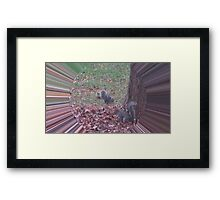 WeatherDon2.com Art 179 Framed Print
