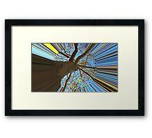 WeatherDon2.com Art 226 Framed Print