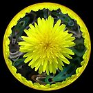 WeatherDon2.com Art 254 by dge357